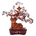Stunning Feng Shui Mix Gemstone Quartz Bonsai Money Tree LARGE